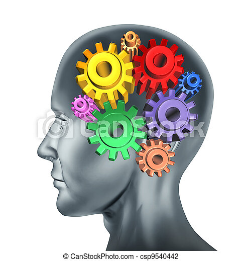 Brain function and intelligence  - csp9540442