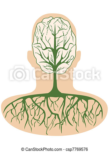 Body growing stages Clipart   k20887475   Fotosearch