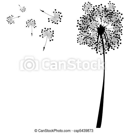 branca, contra, dandelion - csp5439873