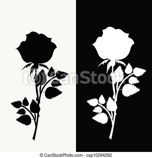 Contorno Rosas Banco De Imagens De Fotos 11 328 Contorno Rosas
