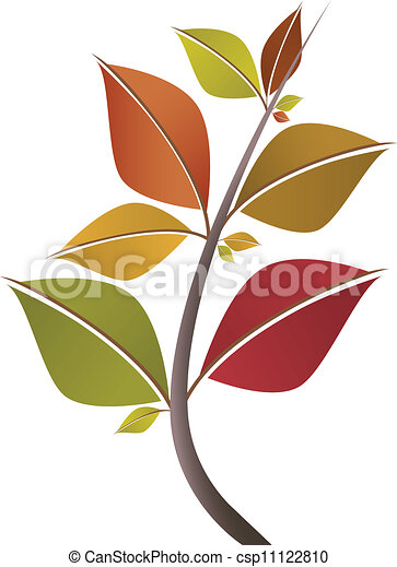 Branch of autumn leaves - csp11122810