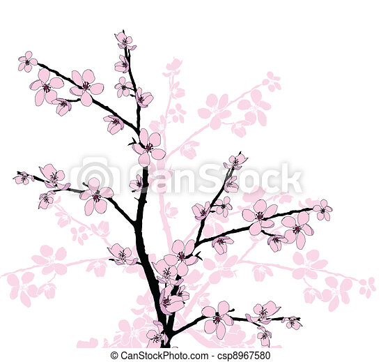 Branch of beautiful cherry blossom  - csp8967580