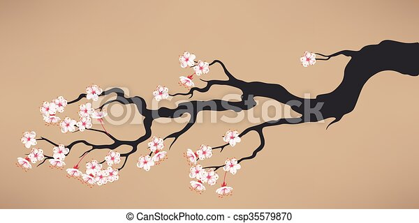 Branch of blooming cherry - csp35579870