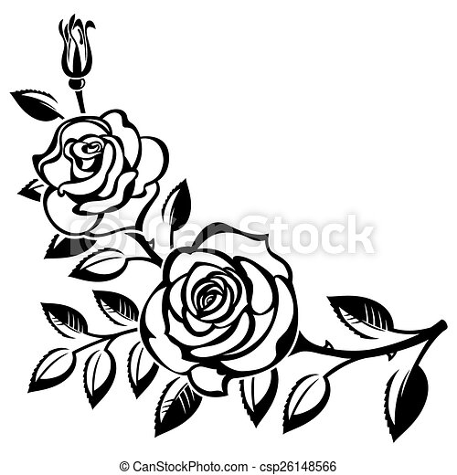 branch of roses on a white background clip art vector search rh canstockphoto co uk rose vectoriel gratuit roses vectoriel