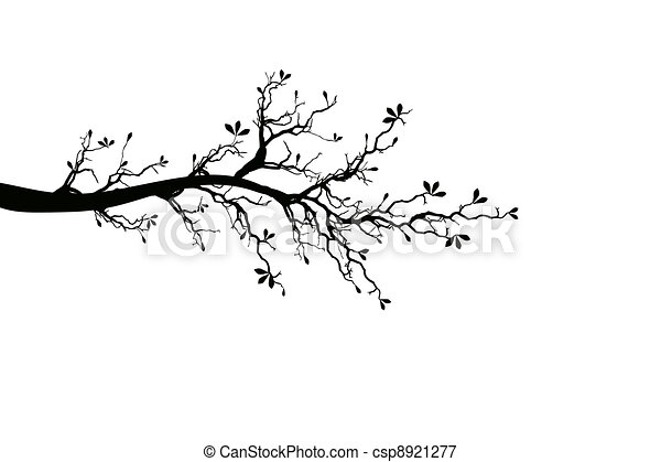 Branch of Spring Tree - csp8921277
