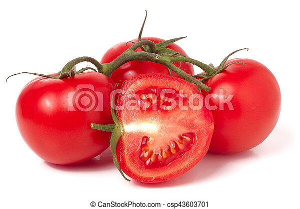 branch of tomato and half isolated on white background - csp43603701