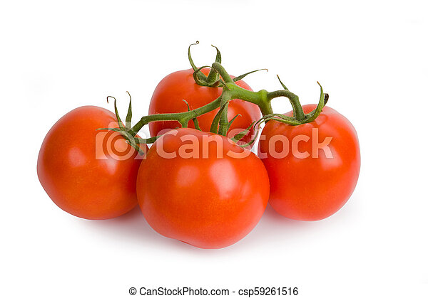 Branch of tomato isolated on white background - csp59261516