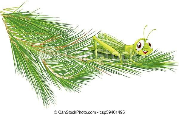 Branch with a happy grasshopper - csp59401495
