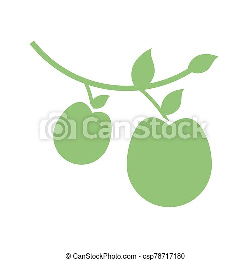branch with apples icon, silhouette style - csp78717180