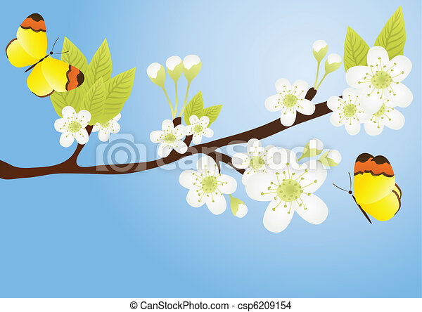 branch with butterflies - csp6209154