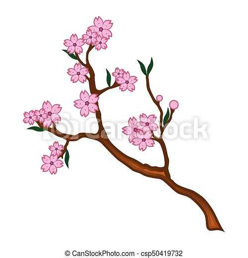 Branch with cherry blossoms illustration - csp50419732