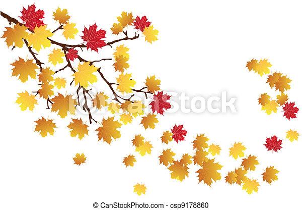 branche, automne - csp9178860