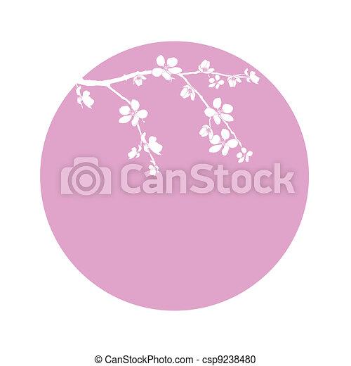branche, fleur, cercle, cerise, beau - csp9238480