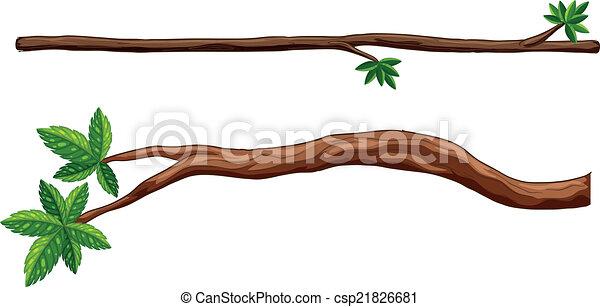 Branches - csp21826681