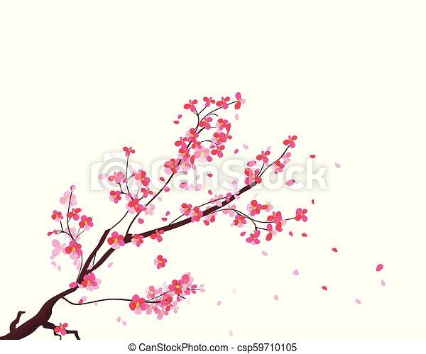 Branches Frame Fleur Cerisier Japonaise Main Aquarelle Sakura Fond Dessine Fleurs Canstock