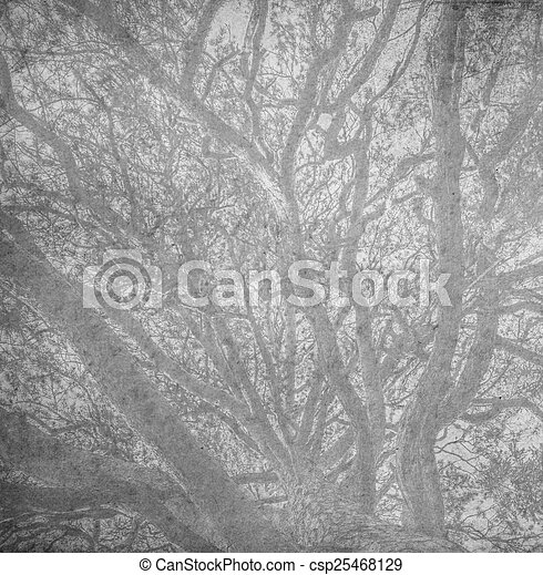 branches of a tree against sky - csp25468129