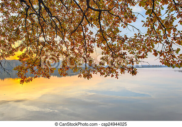 Branches with autumn leaves over the river - csp24944025