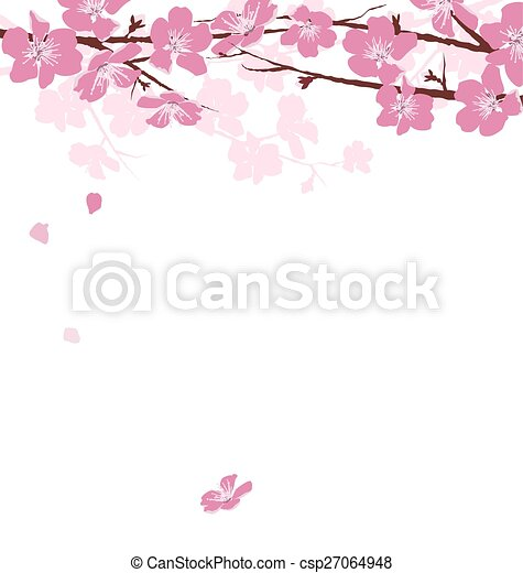 Branches with flowers isolated on white - csp27064948