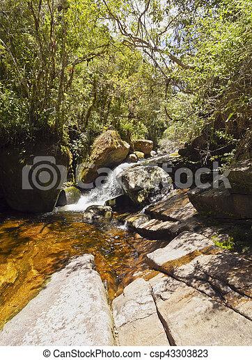 Serra dos orgaos parque nacional, Brasil - csp43303823