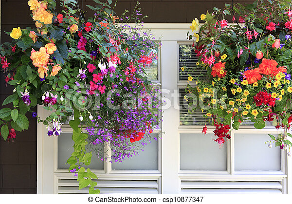 brauner k rbe wall fenster h ngender weisse blumen stockfoto fotografien und clipart. Black Bedroom Furniture Sets. Home Design Ideas