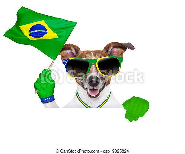 brazília, fifa, kutya, világbajnokság - csp19025824
