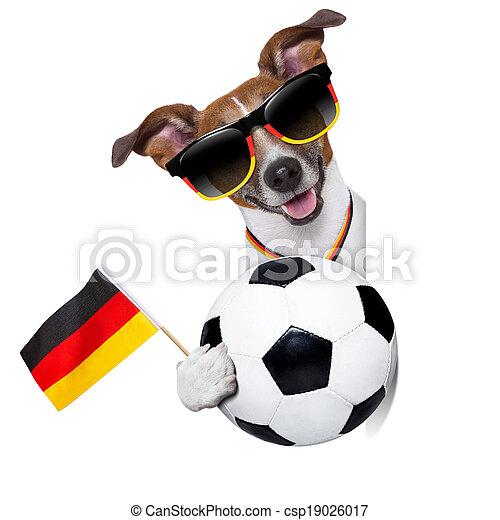 brazil  fifa world cup  dog - csp19026017