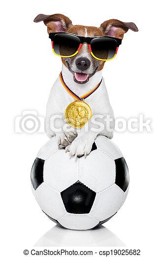 brazil  fifa world cup  dog - csp19025682