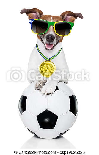 brazil  fifa world cup  dog - csp19025825