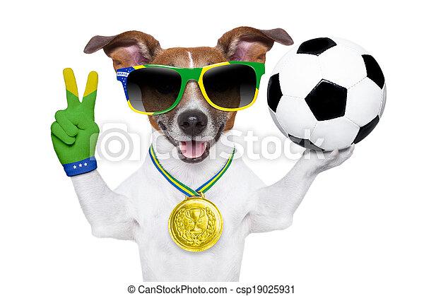 brazil  fifa world cup  dog - csp19025931