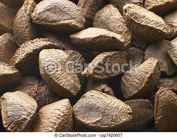 Brazil Nut Shells - csp7420607