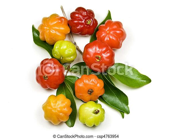Brazilian Cherry - Pitanga - csp4763954