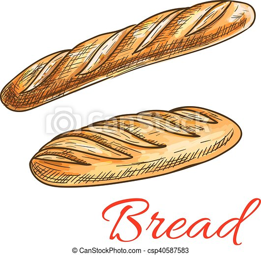 Bread sketch with french baguette and long loaf - csp40587583