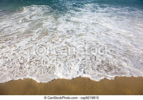 Breaking ocean waves - csp9219815
