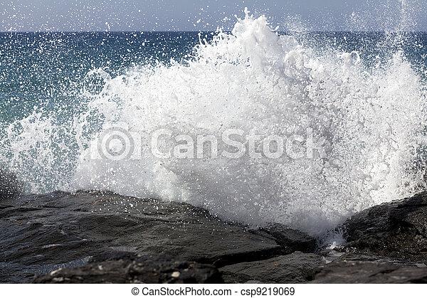 Breaking ocean waves - csp9219069