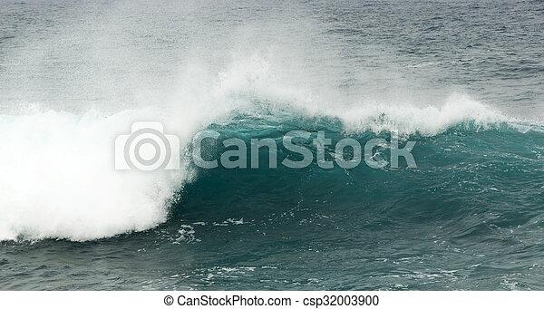 breaking ocean waves - csp32003900