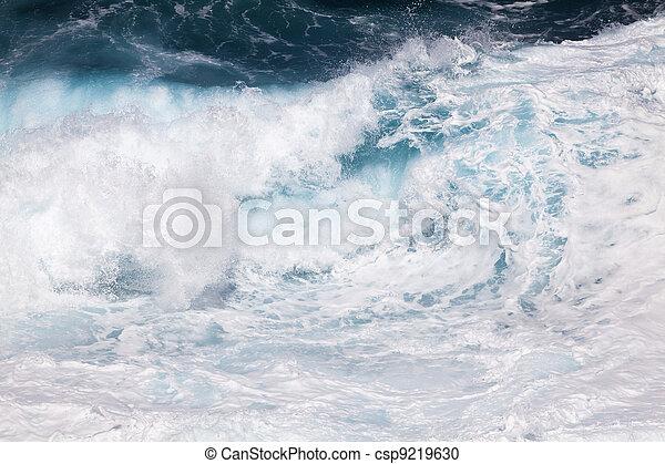 Breaking ocean waves - csp9219630