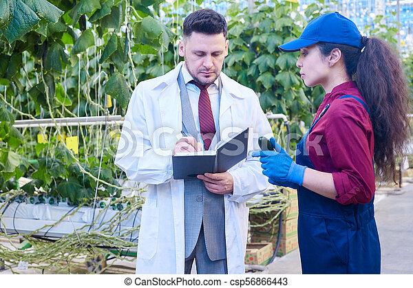 Breeder Talking to Worker in Farm - csp56866443