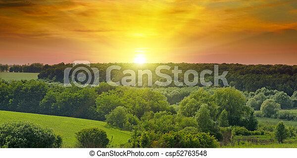 breit, landschaft., felder, photo., sunrise., hell, grün, landwirtschaftlich - csp52763548
