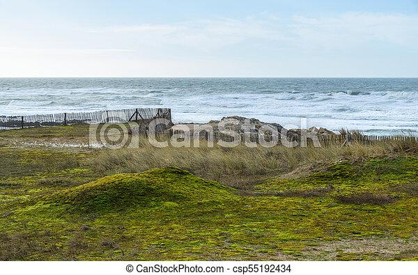 bretagne, côtier, paysage, france - csp55192434