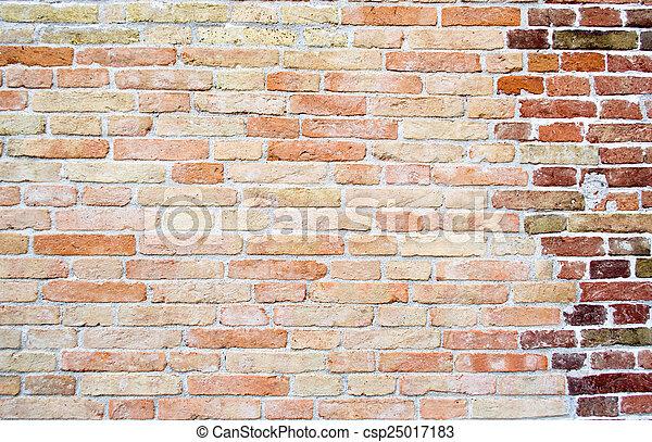 brick wall - csp25017183