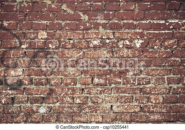 Brick Wall - csp10255441