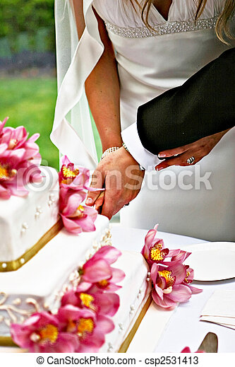 bride and groom cutting cake - csp2531413