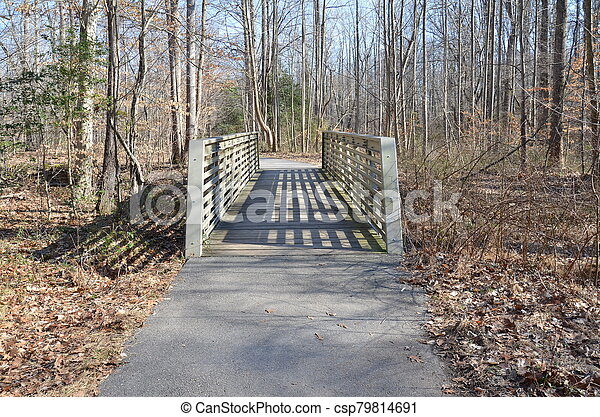 bridge and trail or path with trees in forest - csp79814691