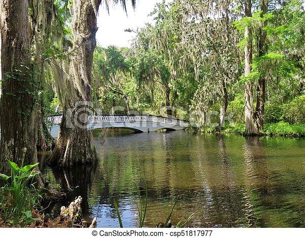 Bridge at Magnolia Plantation in Charleston, SC - csp51817977