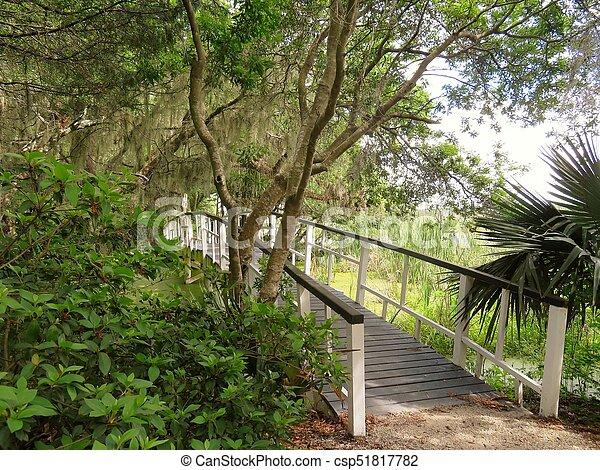 Bridge at Magnolia Plantation in Charleston, SC - csp51817782