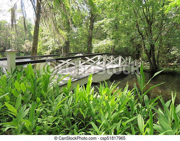 Bridge at Magnolia Plantation in Charleston, SC - csp51817965