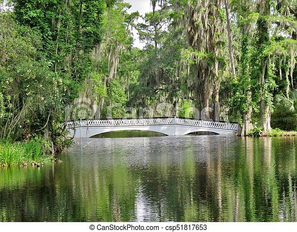 Bridge at Magnolia Plantation in Charleston, SC - csp51817653