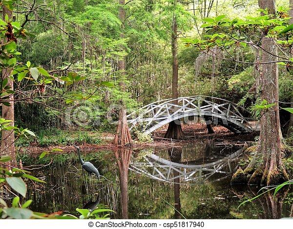 Bridge at Magnolia Plantation in Charleston, SC - csp51817940