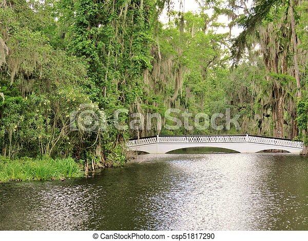 Bridge at Magnolia Plantation in Charleston, SC - csp51817290