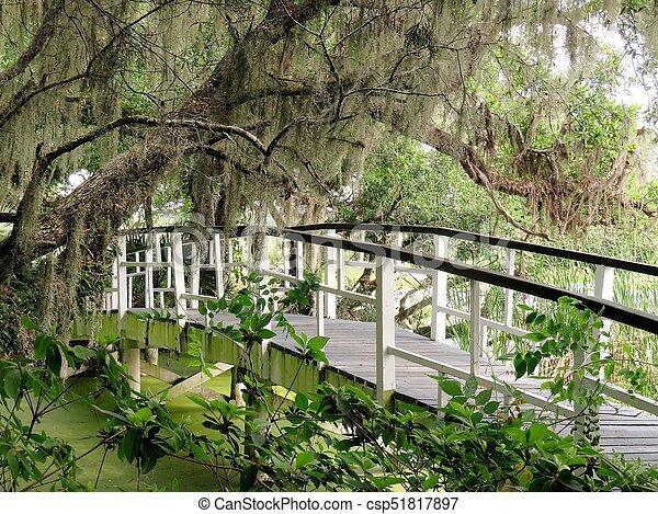 Bridge at Magnolia Plantation in Charleston, SC - csp51817897